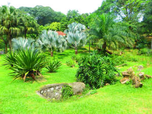 Батанический сад Куала-Лумпура.
