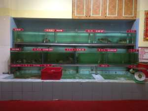 Витрина в местном ресторане. Рыбы, омары, жабы, змеи. Все что угодно.
