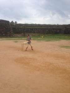 Учусь играть крикет.